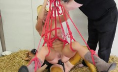 Naughty cutie is taken in anal assylum for uninhibited treat