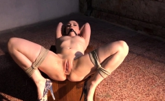 Spreadeagled bdsm sub gagged and dildo toyed