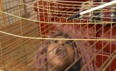 Caged Black Ghetto Whore Slapped Around And Face FUcked