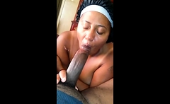 Ebony bbw mone divine sucks big black cock