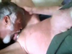 Sexy Silver Daddybear Sucking Cock Part 2