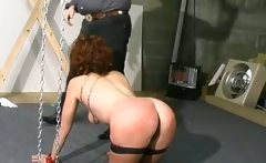 Hot brunette bitch gets bound