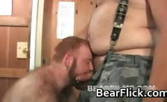 Ashby Red and Nate Wolf gay bears